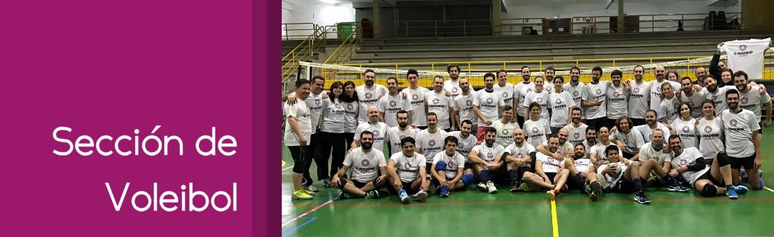 Sección de Voleibol